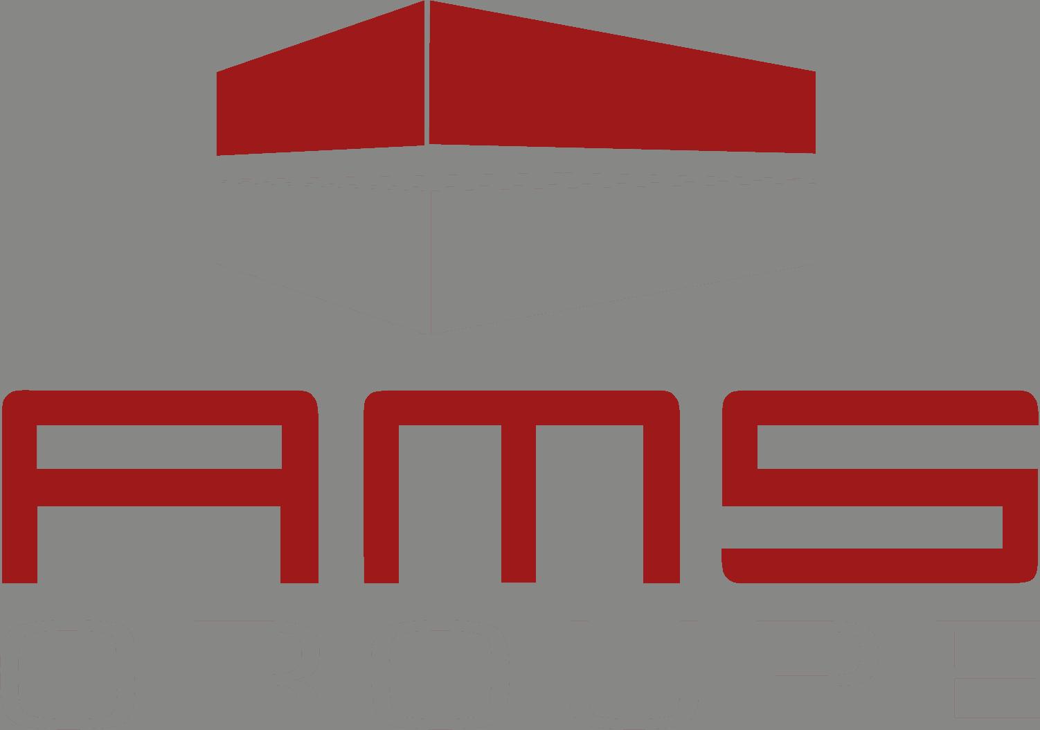 AMS GmbH Logo
